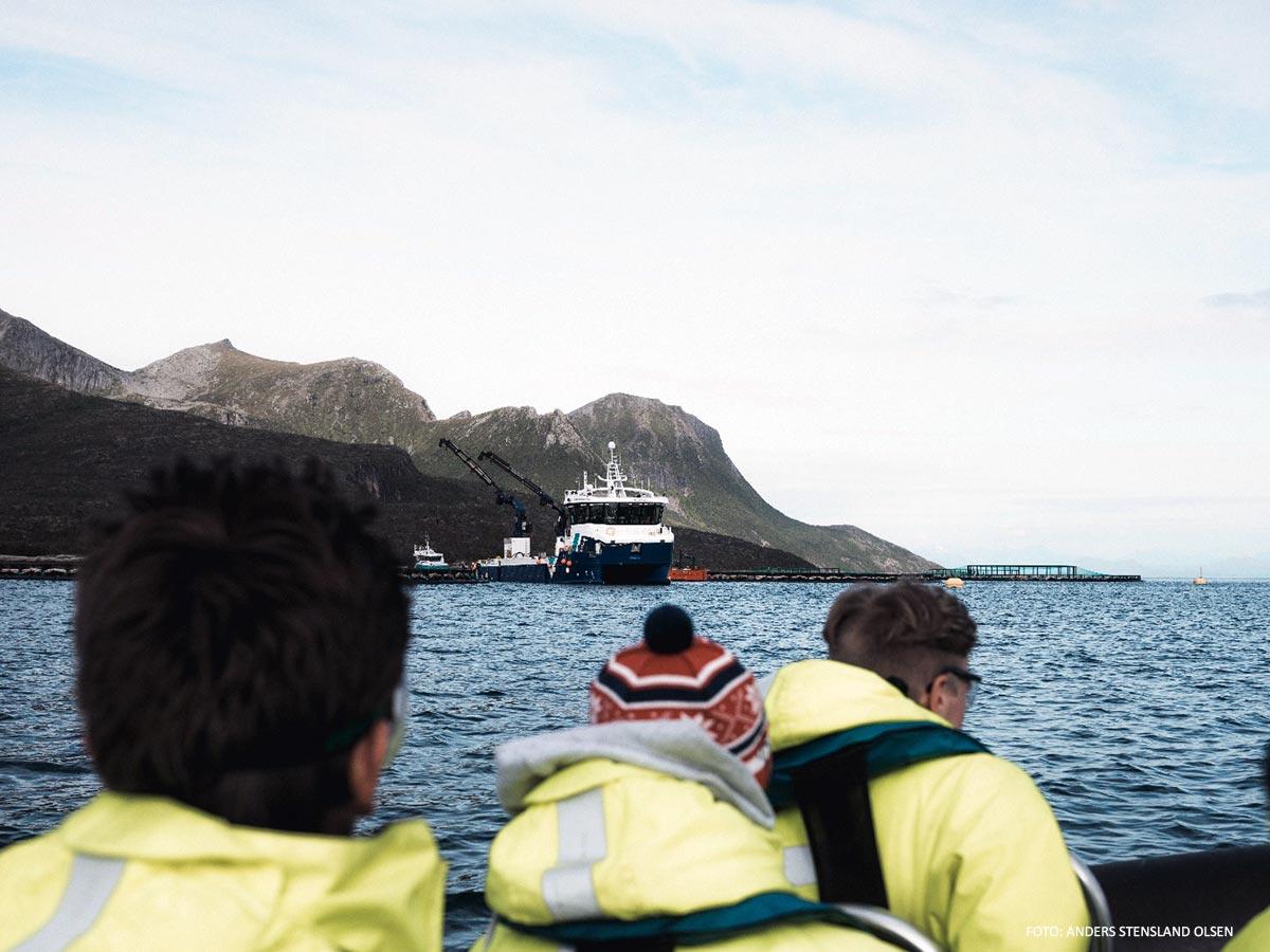 turister i flytedrakter på båt severdigheter aktiviteter i Hamarøy