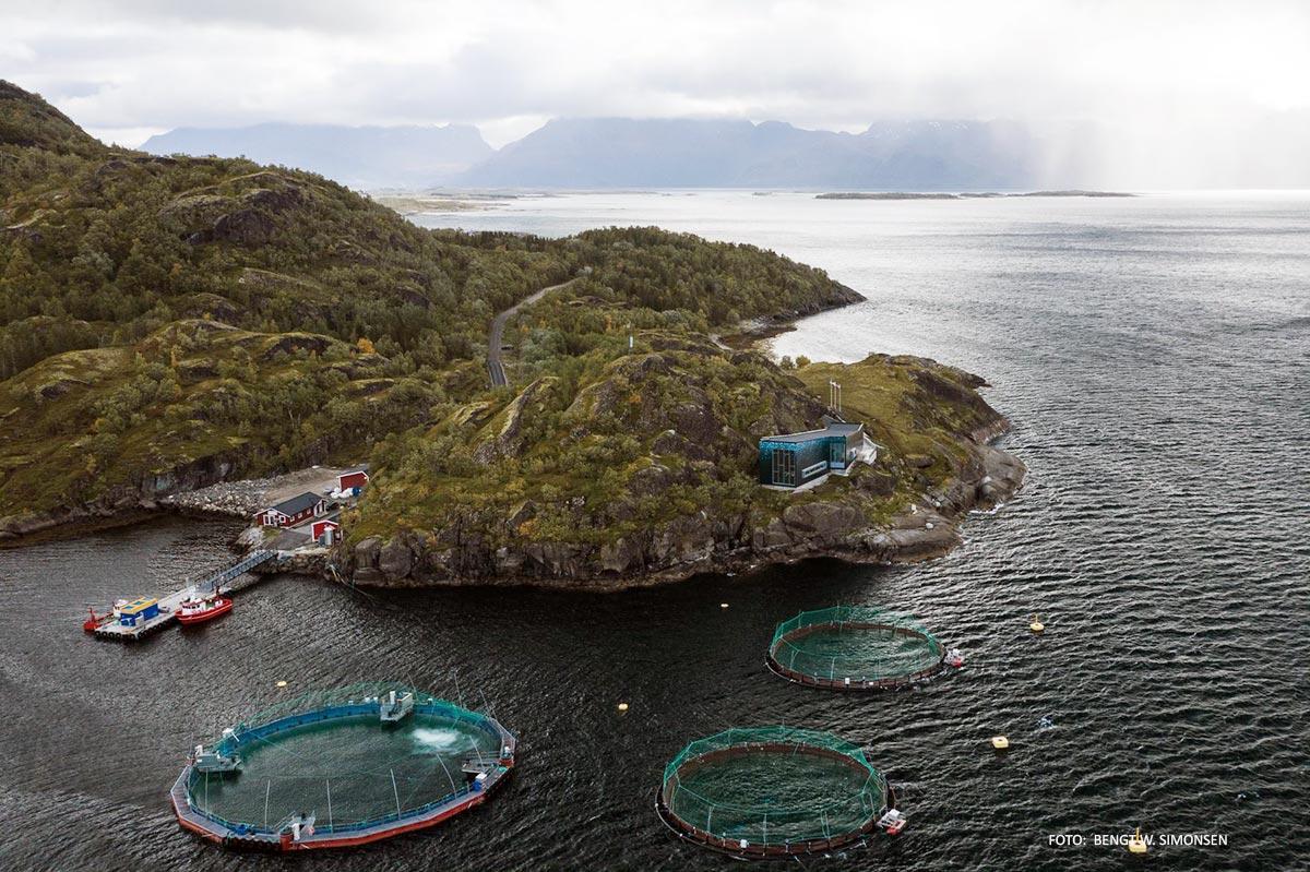 merder i kystlandskap severdigheter aktiviteter i Hamarøy