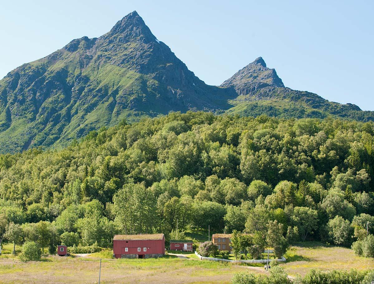 frodig landskap med fjell og liten gård i forgrunnen severdighet i Hamarøy