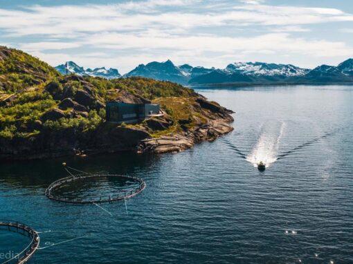 Vestfjord Explorer