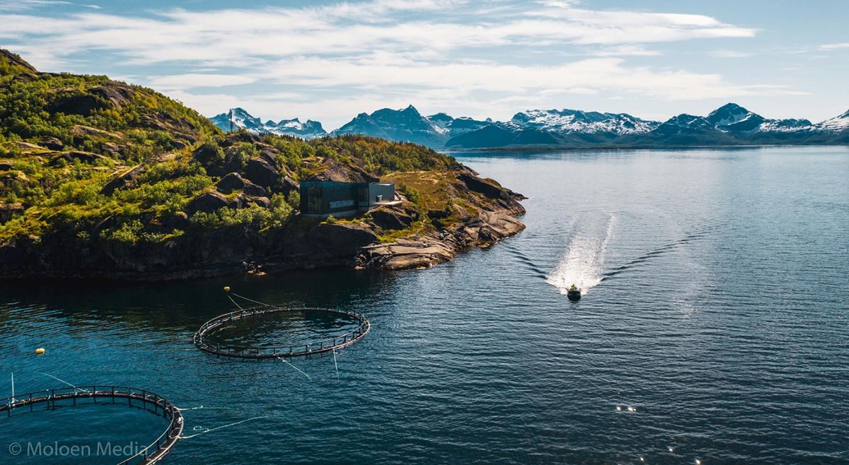 luftbilde med båt og merder i kystlandskap aktiviteter i Hamarøy